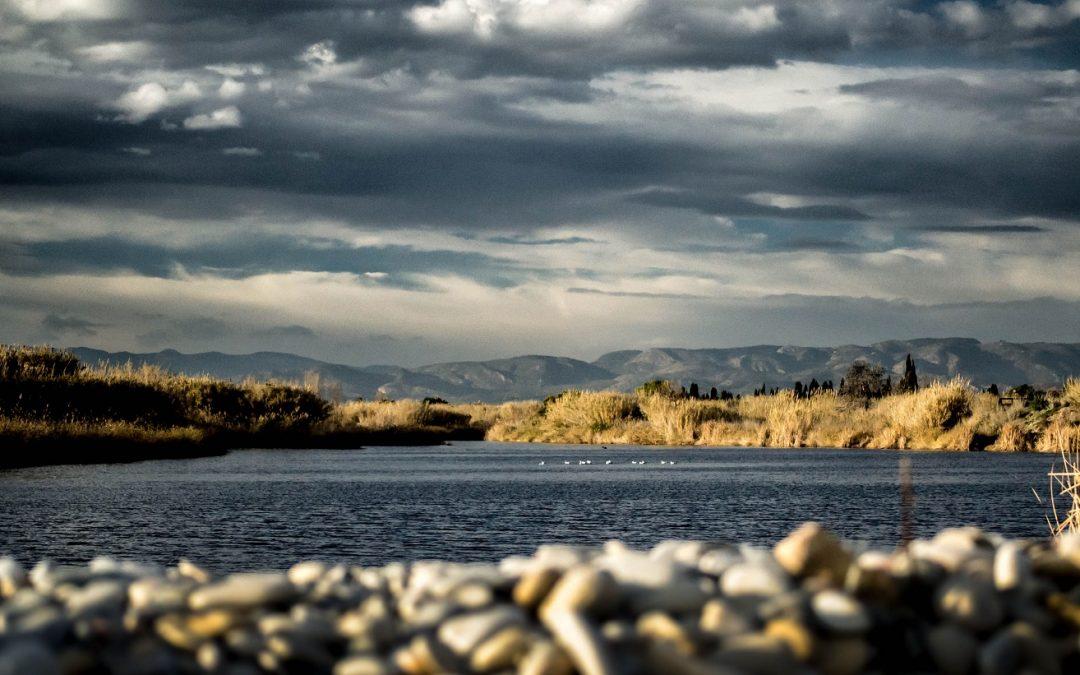 El IV concurs de fotografia «Una ullada al Millars» promociona els valors naturals del paisatge protegit de la desembocadura