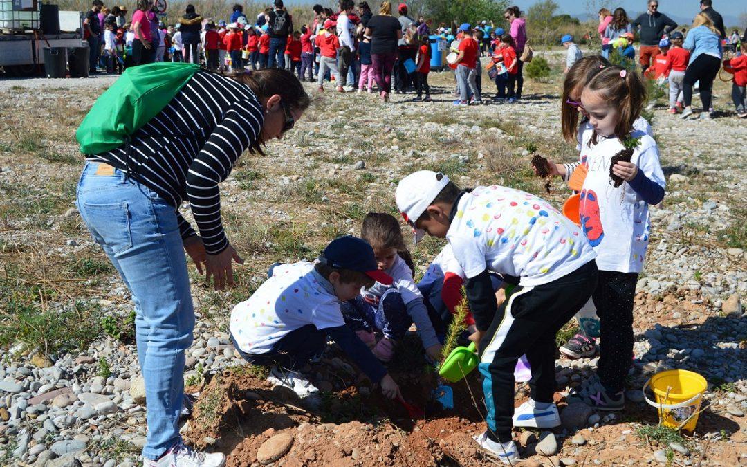 400 alumnes d'infantil d'Almassora celebren el Dia de l'Arbre al Paisatge Protegit de la Desembocadura del riu Millars