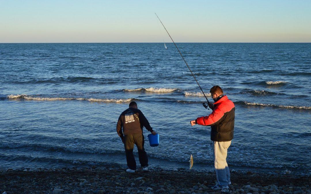Una excepcional concentració de peixos a la desembocadura del Millars reuneix a desenes de pescadors de canya