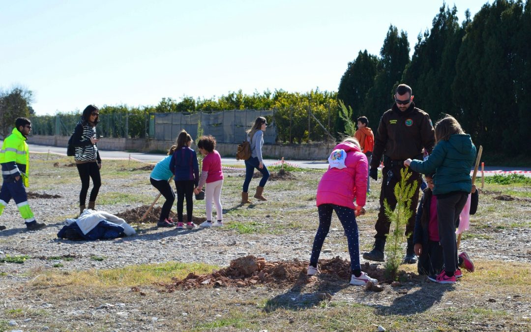 50 alumnes del col·legi José Iturbi de Borriana planten arbres al Paisatge Protegit de la Desembocadura del riu Millars