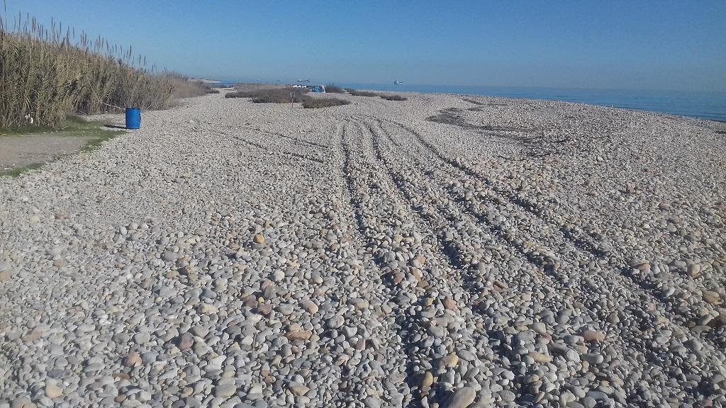 El Consorci riu Millars denuncia la circulació de tot terrenys per la platja de la gola sud de Borriana