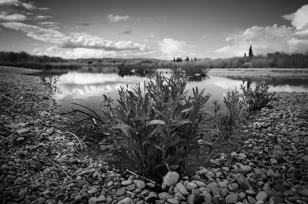 IV Concurs Fotogràfic. Entre el agua y las piedras. Foto Pilar Villanueva Redón