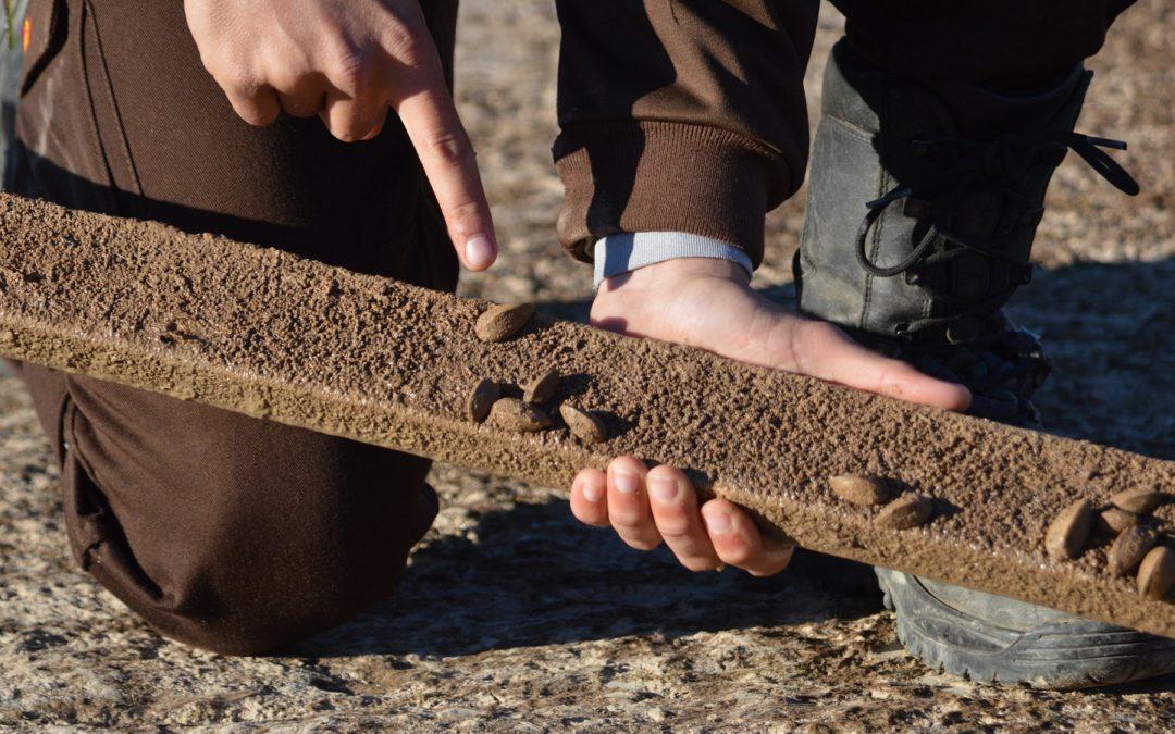 El Consorci del Paisatge Protegit de la Desembocadura del riu Millars participa en la campanya de lluita contra la clòtxina zebrada