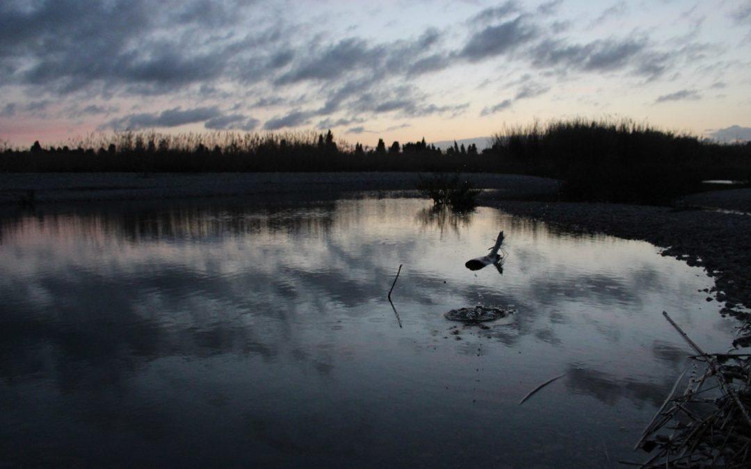 IV Concurs Fotogràfic. La gota que colma el río. Foto Teresa Esteban Roch