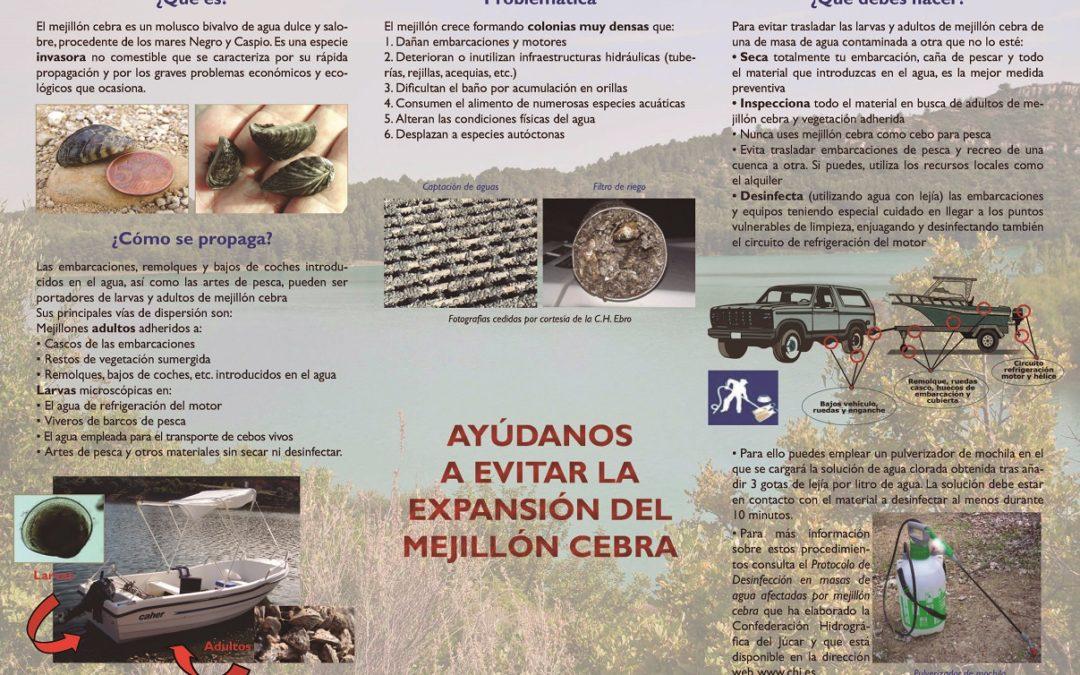 Lluita contra l'expansió de la clòtxina zebrada (espècie invasora)