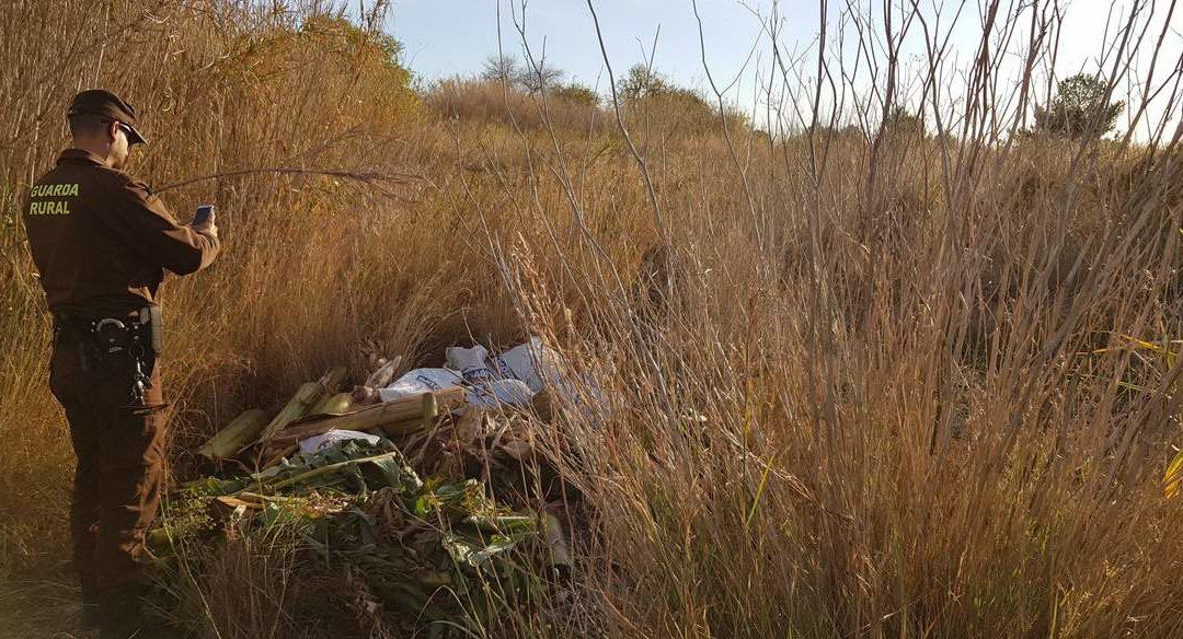 El control d'exòtiques, el cabal ecològic, la lluita contra els abocaments il·legals i la conservació de les espècies emblemàtiques han estat els principals objectius del Consorci riu Millars durant el 2019