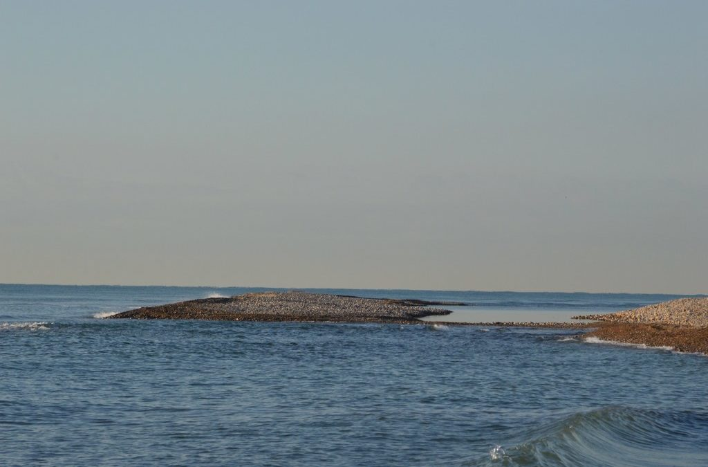 La borrasca «Gloria» canvia la fisonomia del Paisatge Protegit de la Desembocadura del riu Millars
