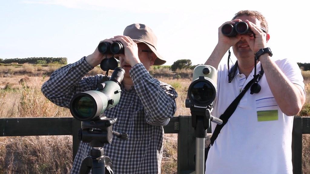 El Consorci Gestor del Paisatge Protegit del Riu Millars convida a l'observació d'aus en aquest espai privilegiat