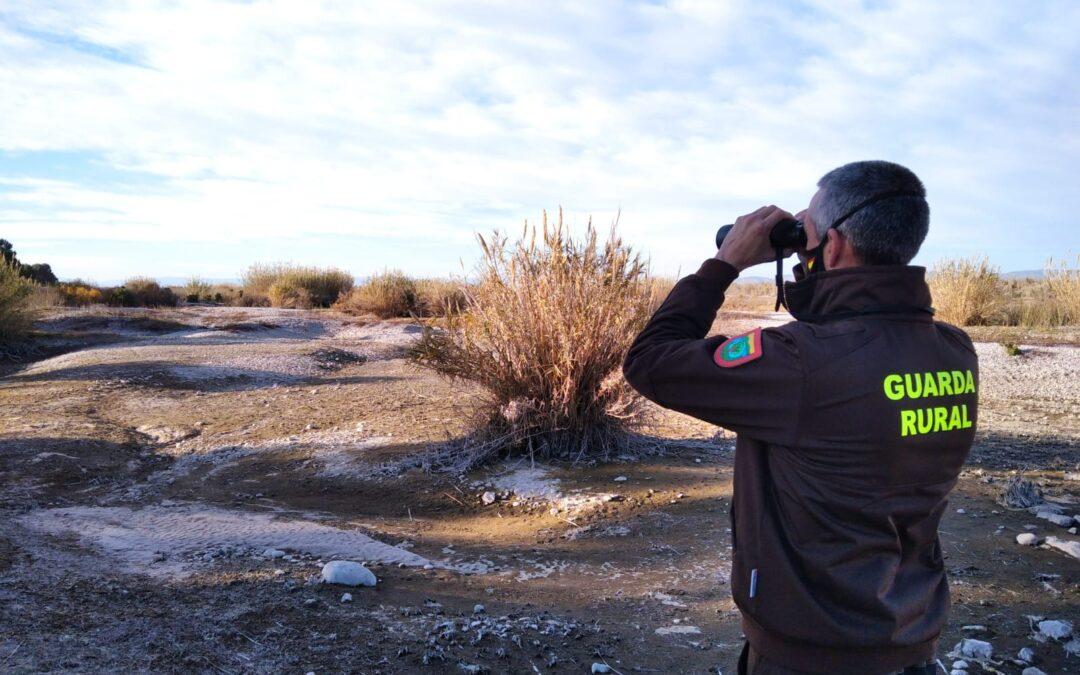 El Consorci gestor del Paisatge Protegit de la Desembocadura del riu Millars participa en el cens hivernal d'arpellot de marjal en les zones humides de la Comunitat Valenciana