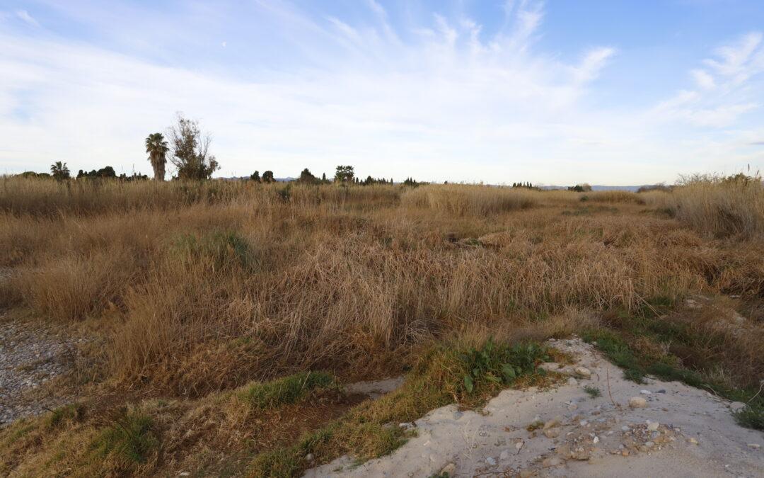 El Paisatge Protegit de la Desembocadura del riu Millars recuperarà l'ecosistema de la llacuna de la Gola Nord