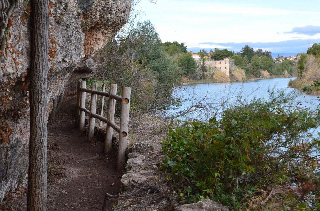 El consorci gestor del Paisatge Protegit de la Desembocadura del riu Millars organitza una ruta a peu per la senda del botànic Calduch