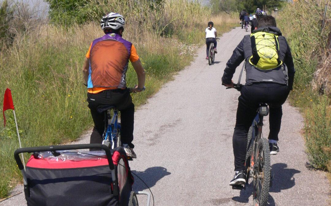 El Consorci gestor del Paisatge Protegit de la Desembocadura del riu Millars organitza una ruta gratuïta en bicicleta des de l'ermita de Santa Quitèria fins a les Goles