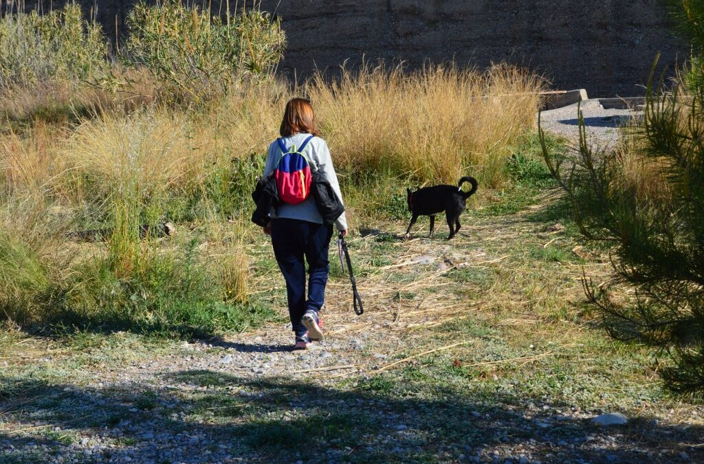 El Consorci gestor del Paisatge Protegit de la Desembocadura del riu Millars recorda la prohibició de dur gossos solts