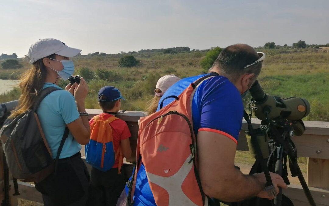 Un «birdwatching» familiar al Paisatge Protegit de la Desembocadura del riu Millars