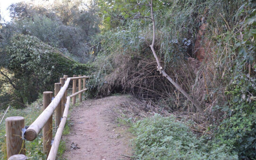 La ruta botànica del Paisatge Protegit de la Desembocadura del Millars continua tancada en pro de la seguretat dels usuaris